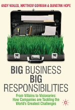 The Big Responsibilities of Big Business