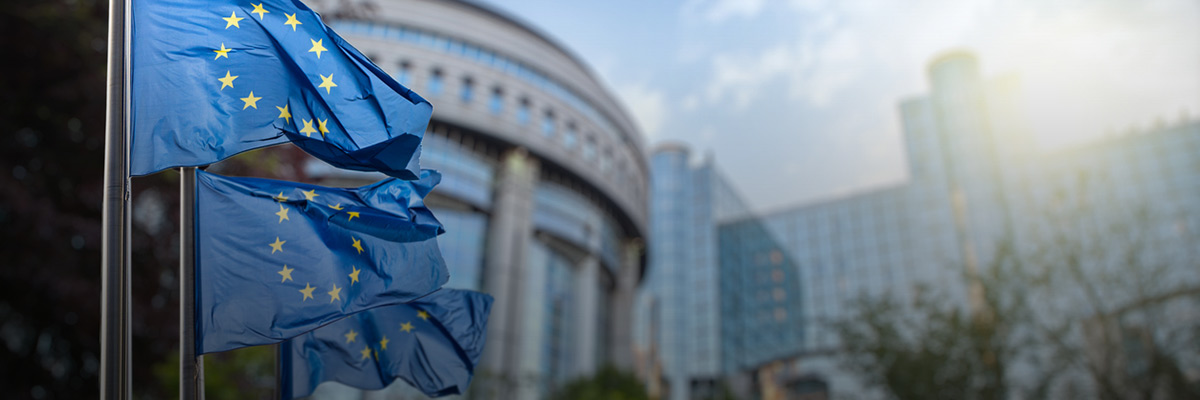 Sustainability Management: Six Things Business Should Know About the EU Taxonomy