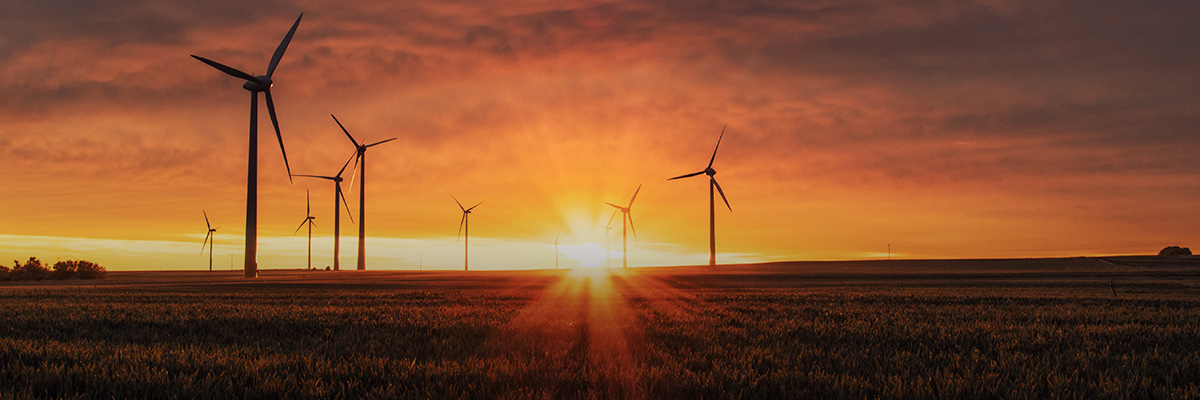 BSR Conference: How Business Can Match the Boldness of the Paris Climate Agreement