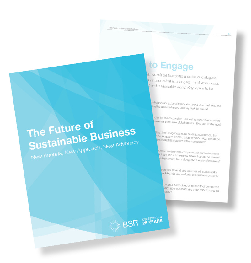 The Future of Sustainable Business report cover