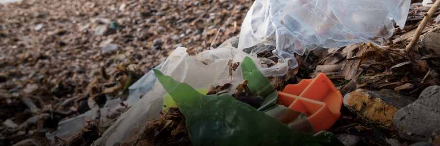 Consumer Products: What Can Business Do to Prevent Plastic from Becoming Waste in Asia Pacific?