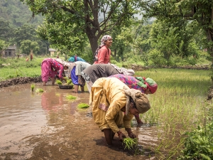 Climate Change: Climate Solutions Need Women at the Center