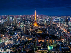 Financial Services: Progress and Opportunities for Responsible Investing in Japan